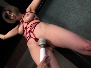dildoing together fro pleasuring fro bdsm toys